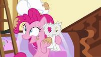 "Pinkie ""Shining Armor and Princess Cadance..."" S5E19"