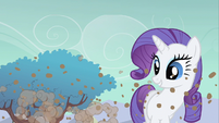 Rarity gold this time S1E19