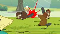 Beavers S3E5