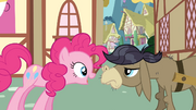 Pinkie meeting CDD S2E18.png