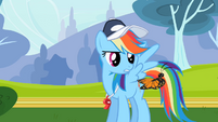 Rainbow Dash looking at butterfly S2E07