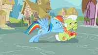 Rainbow Dash pushing Granny Smith S2E08