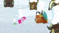 "Pinkie Pie ""is this part of the festival?"" S7E11"