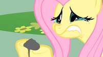 Crying Fluttershy S01E22