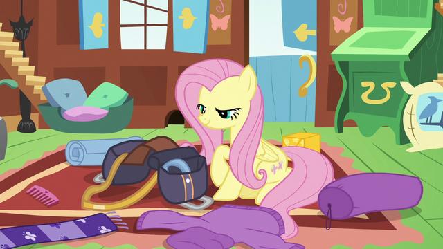 File:Fluttershy packing a saddlebag S6E17.png