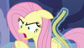 "Fluttershy frustrated ""one more time!"" S7E14.png"