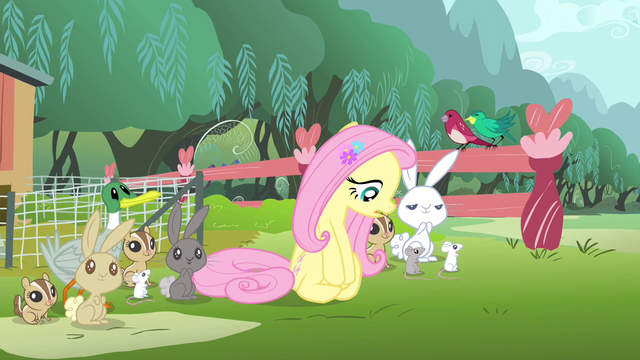 File:Fluttershy 'you didn't hear me' S4E14.png