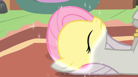Fluttershy turning back to normal S2E2