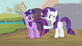 Rarity what it is S2E20.png