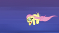Fluttershy worn out S2E22.png
