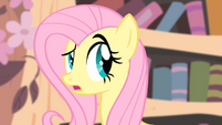 Fluttershy 'I just don't like the idea' S4E07