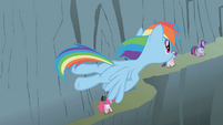 Rainbow Dash flies overhead of the others S1E07