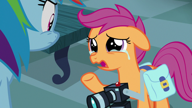 "File:Scootaloo ""hoping to learn more about you"" S7E7.png"