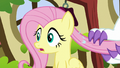 Fluttershy realizes something is wrong S5E13.png