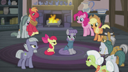 """Maud Pie """"the first one is about rocks"""" S5E20"""