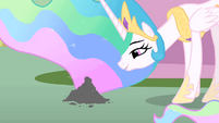 Princess Celestia talking to Philomena's ashes S01E22