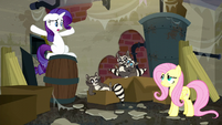 """Rarity """"But what are they doing here?"""" S6E9"""