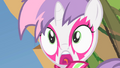 Sweetie Belle Oh no! S1E18.png