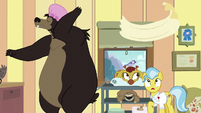 Grizzly bear tosses towel on Dr. Fauna S7E5