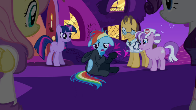 File:Rainbow Dash confessing 3 S2E16.png