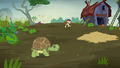 Turtle trying to run away S5E23.png
