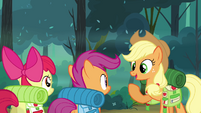 Applejack 'Looks like we're all set then' S3E06