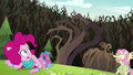 Claw-like vines looming over Pinkie Pie EG4.png