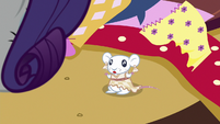 Little mouse wearing a sewn dress S6E21