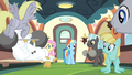 Rainbow Dash addresses the teams S4E24.png
