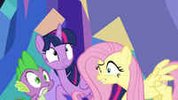 Twilight and Fluttershy hear confetti explosion S5E3