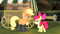 """Apple Bloom asking """"we're good"""" S4E17.png"""
