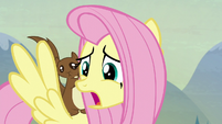 "Fluttershy ""you see?"" S5E23"