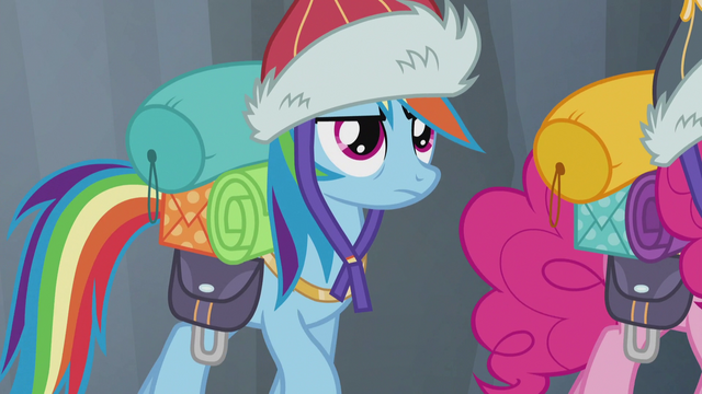 File:Rainbow back to being serious S5E8.png