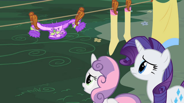 File:Sweetie Belle and Rarity seeing the sweater shrink S2E5.png