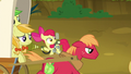 Big McIntosh, Apple Fritter, and Jonagold fleeing S5E4.png