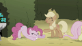 Applejack laughing at Pinkie S2E01.png
