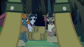 Caballeron and henchponies look at Daring Do S4E04.png