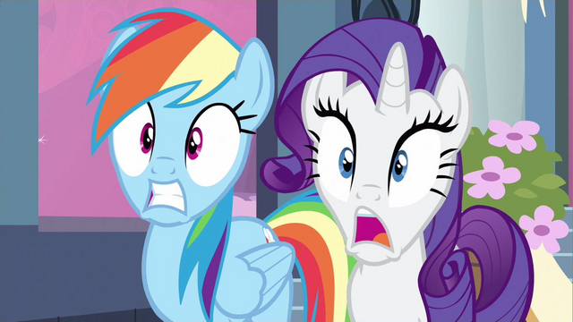 File:Rarity & Rainbow Dash can't believe S2E25.png