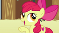 "Apple Bloom ""nopony starts out perfect"" S6E23.png"