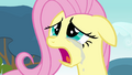 Crying Fluttershy S2E22.png