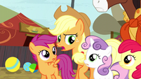 Applejack asks Sweetie Belle what she's talking about S5E6