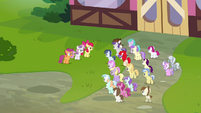 Foals walking up to the CMC S4E15