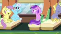 Ponies covering their ears S7E4
