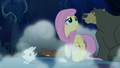 Fluttershy and animals walk through the forest at night S6E15.png