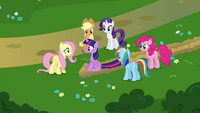 File:Twilight's friends surrounding Twilight S4E26.png