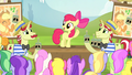 Apple Bloom speaking to the ponies S4E20.png