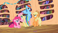 Rainbow Dash don't you know S2E10.png