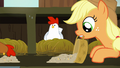 Applejack spreads chicken feed in front of white chicken S6E10.png