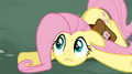 Fluttershy collapsed S02E19.png