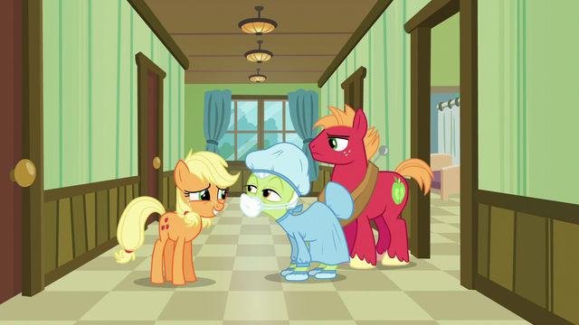 File:Granny Smith dressed in a hospital gown and mask S6E23.png